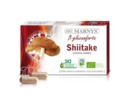 Shiitake 30 tobolek (Houževnatec jedlý)